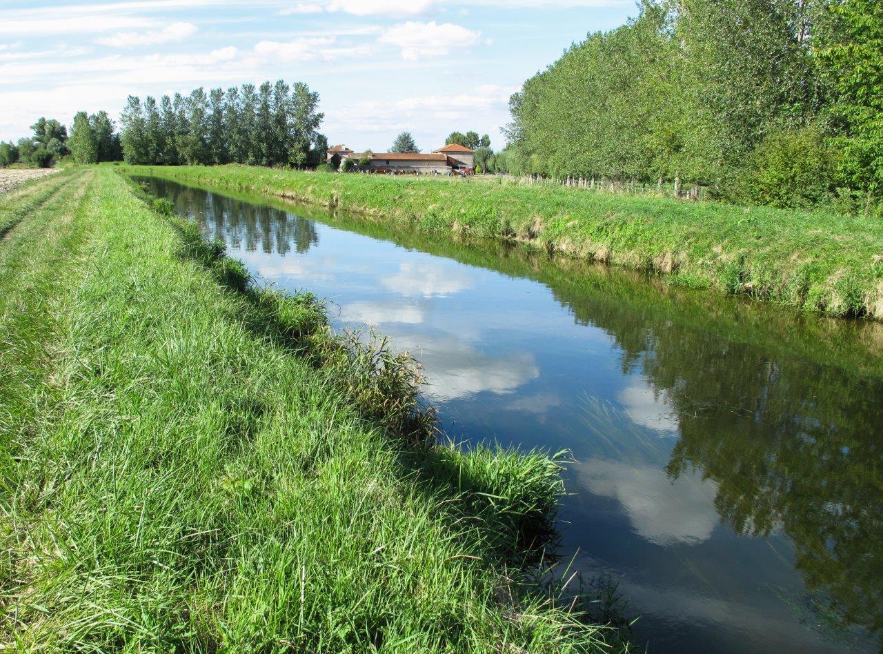 Le Canal du Forez Vers Sury